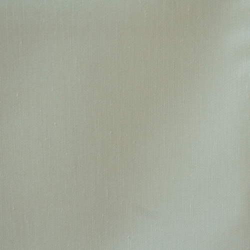 8614 White Wale